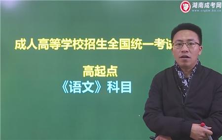 語文-成人高考高升專/高達本-試聽課程