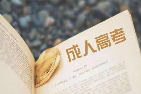 江苏成人高考毕业论文格式要求
