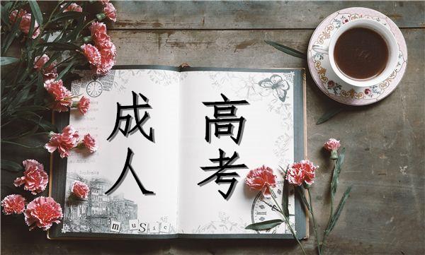2019年湖南成考准考证打印