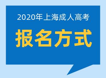 2020年上海专升本成人高考报名方式